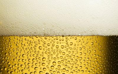 """Per als amants de la cervesa, dissabte, la """"Festa del llúpol fresc"""""""